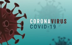 Companies collaborate in fight against COVID-19